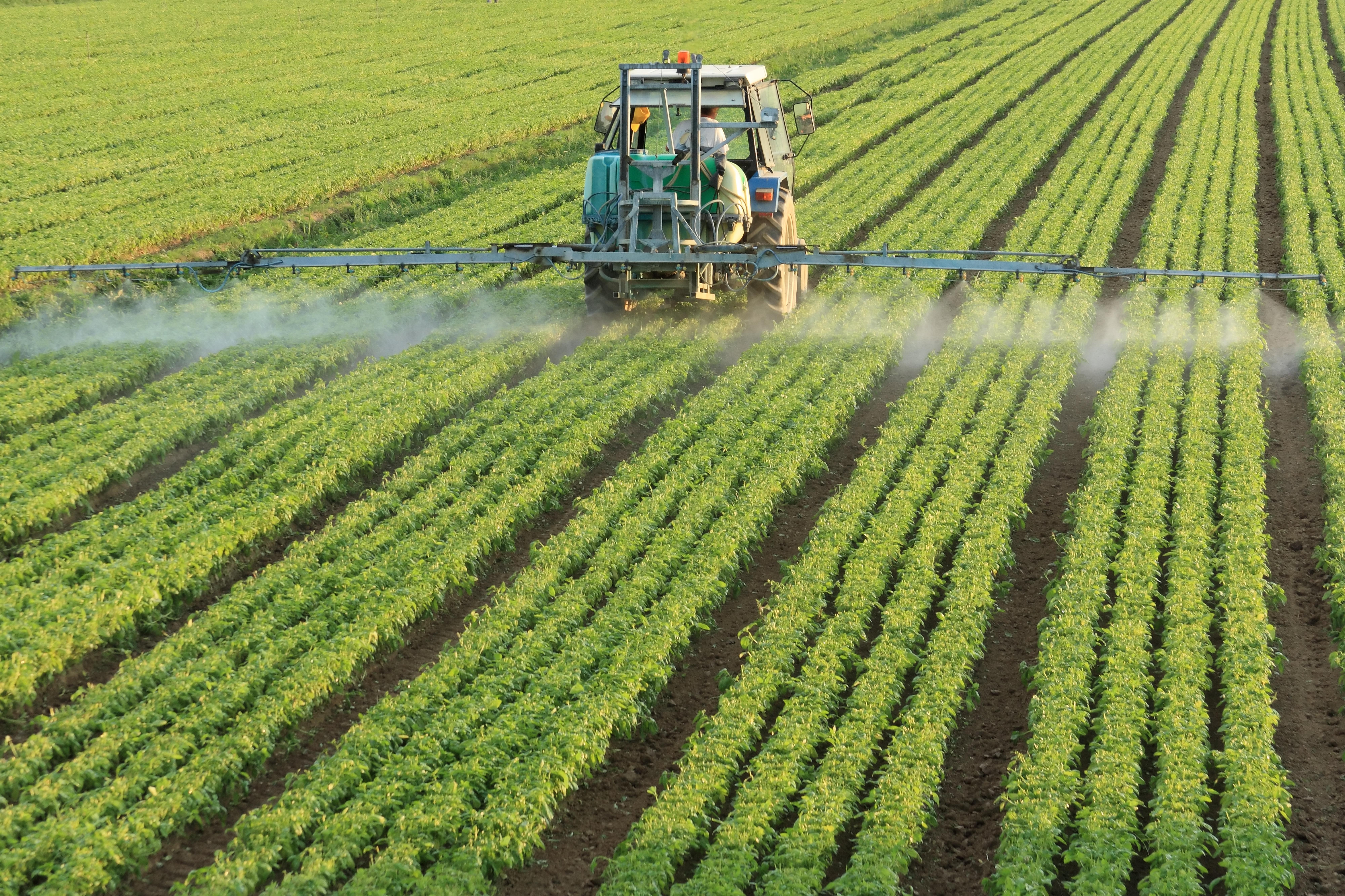 """EMBRAPA """"Pesticidas Naturais Derivados de Plantas: Descoberta e Usos"""""""